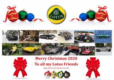 Lotus Winter Christmas Card 2020 JPEG.jpg and